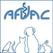 afvac 1 - Wimi