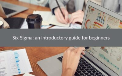 Six Sigma: an introductory guide for beginners